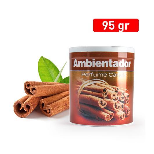 AMBIENTADOR LATA CANELA 01564