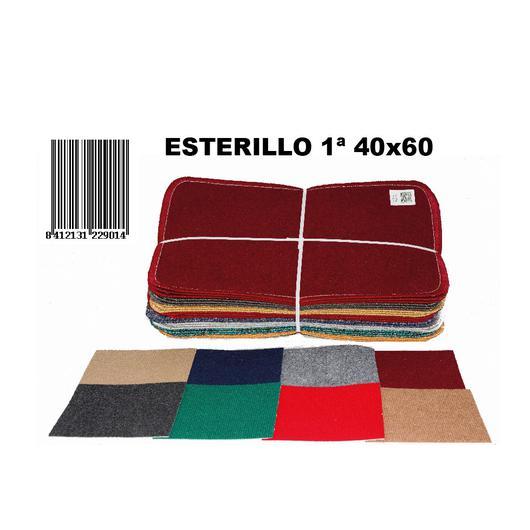 ESTERILLO 1ª 40X60 22901